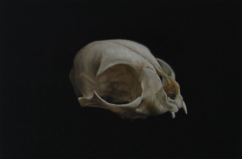 David Monllor - Skull IV - Oil on Wood