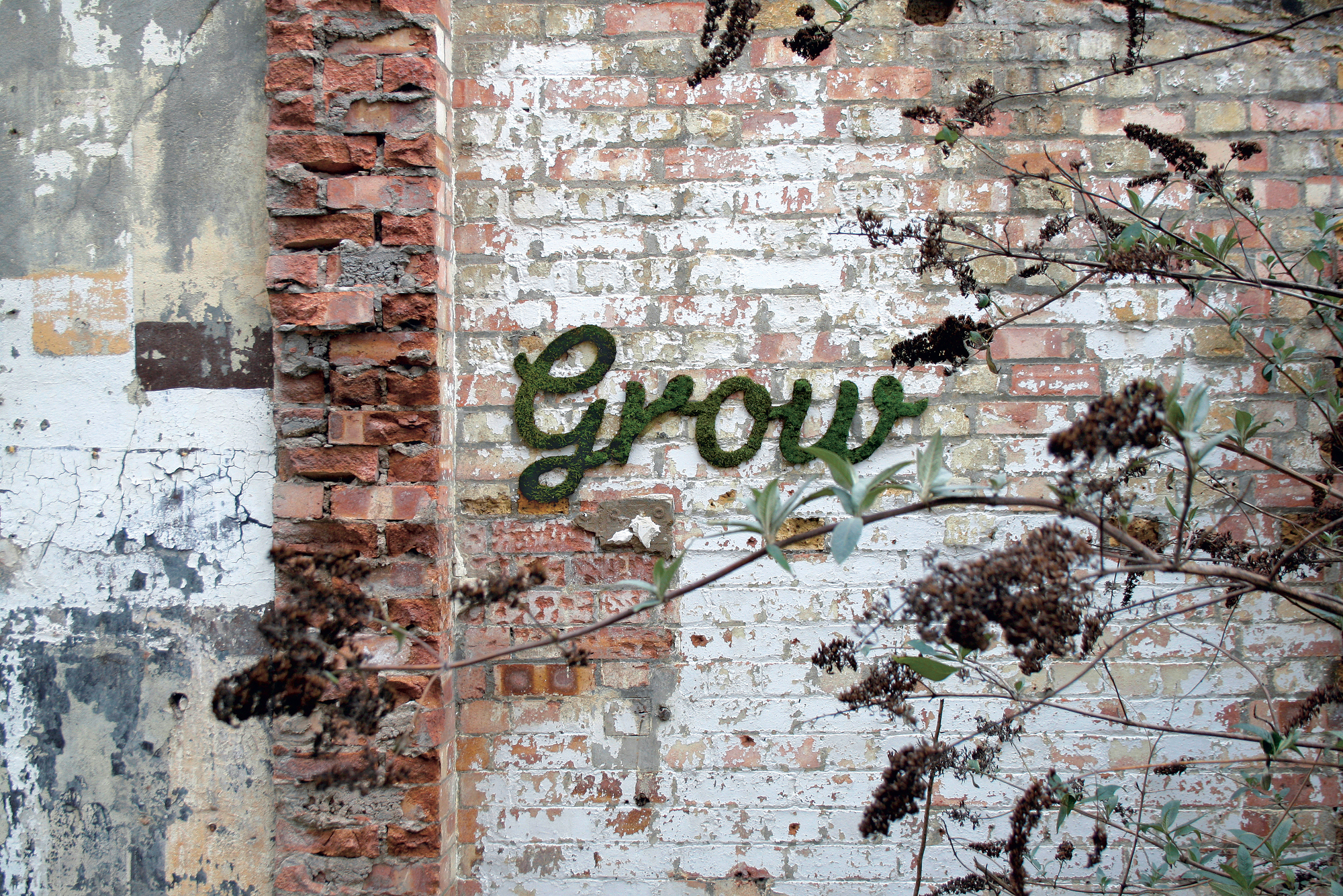 """Grow"", London, England, 2012, Moos, S. 52 © Anna Garforth / Street Art Reloaded, Prestel 2015"