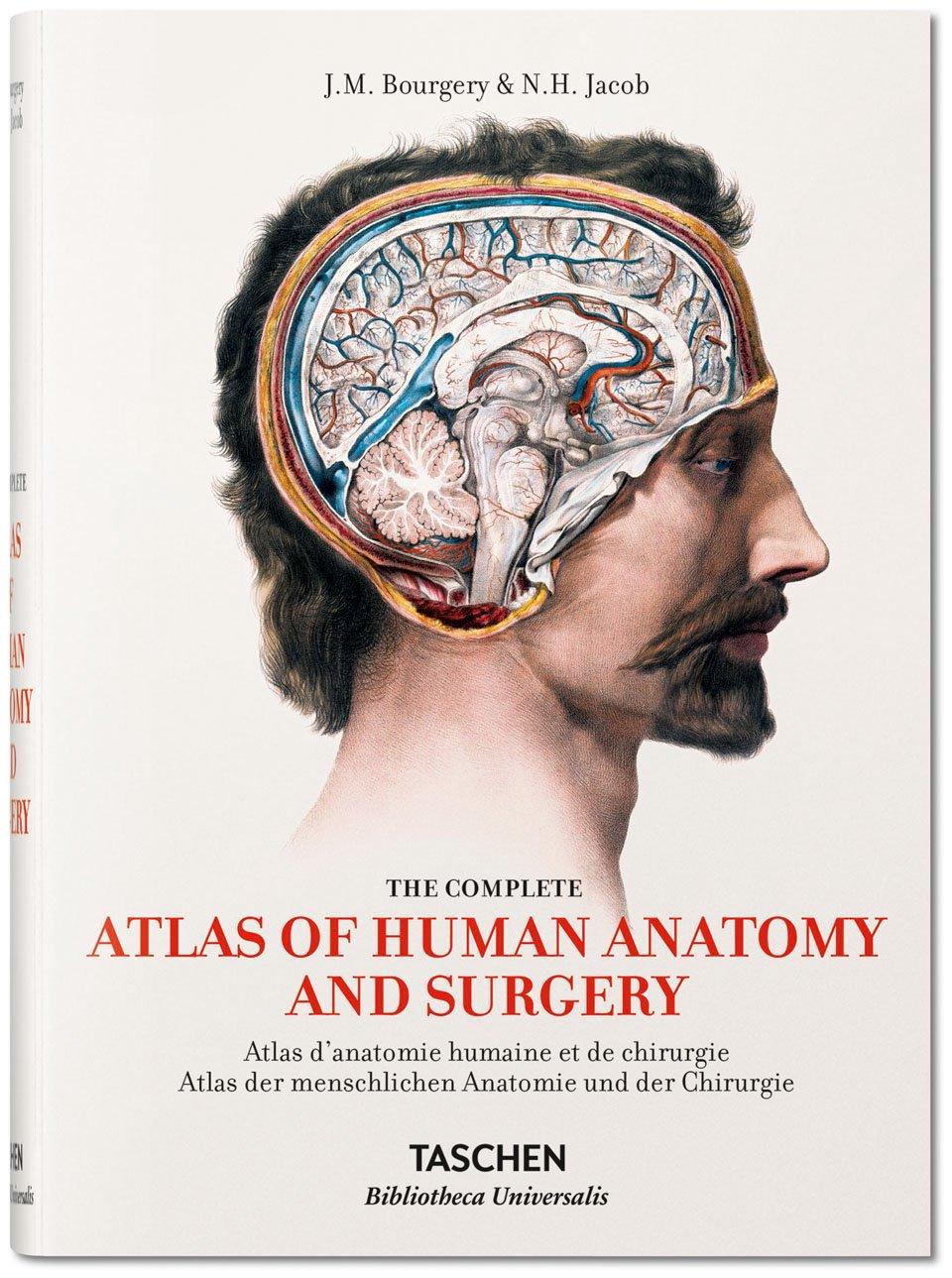Atlas der menschlichen Anatomie und der Chirurgie – URBAN-ART & LIFE ...