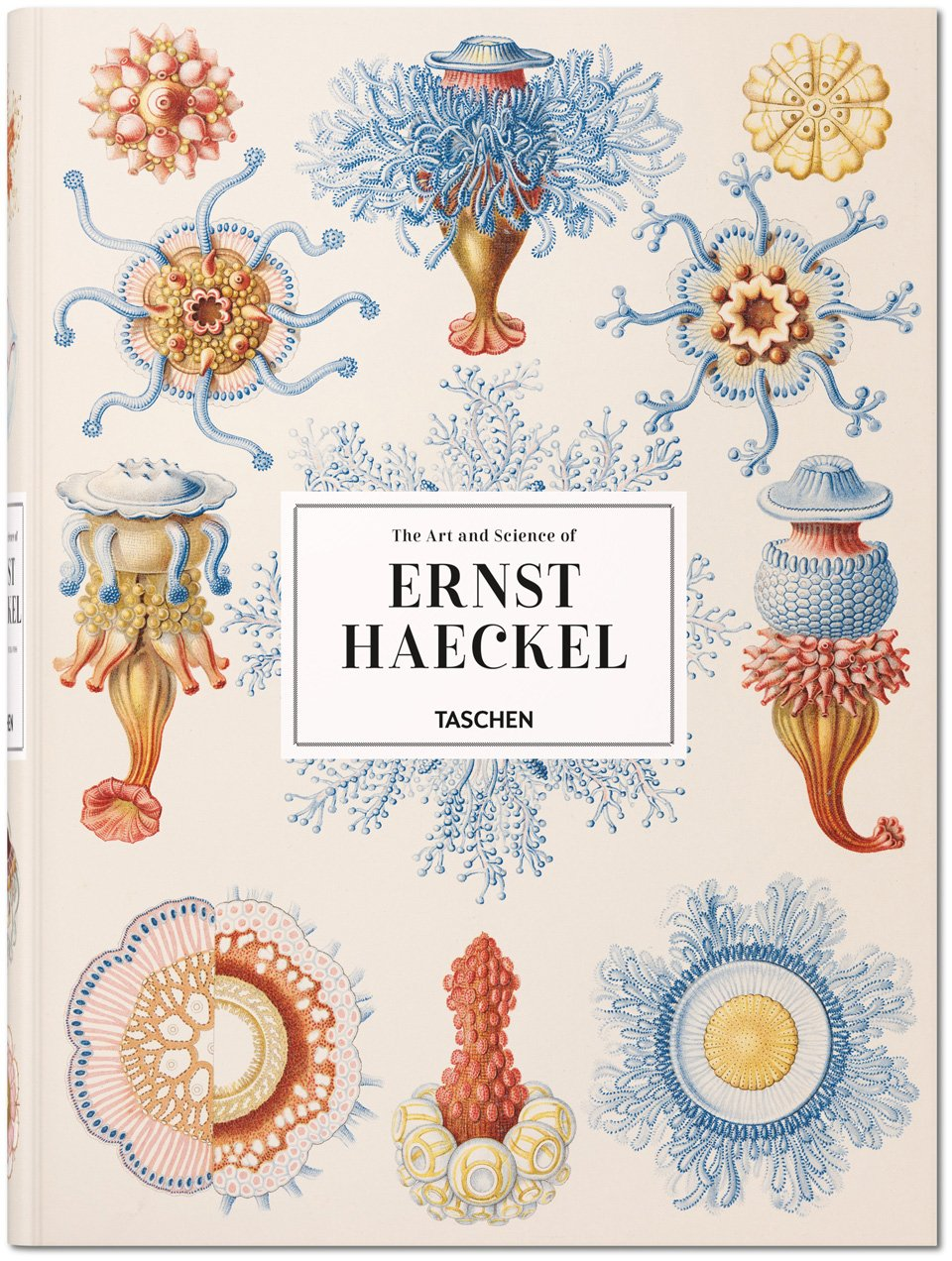 Kunst und Wissenschaft Ernst Haeckels | Rainer Willmann, Julia Voss | Taschen Verlag